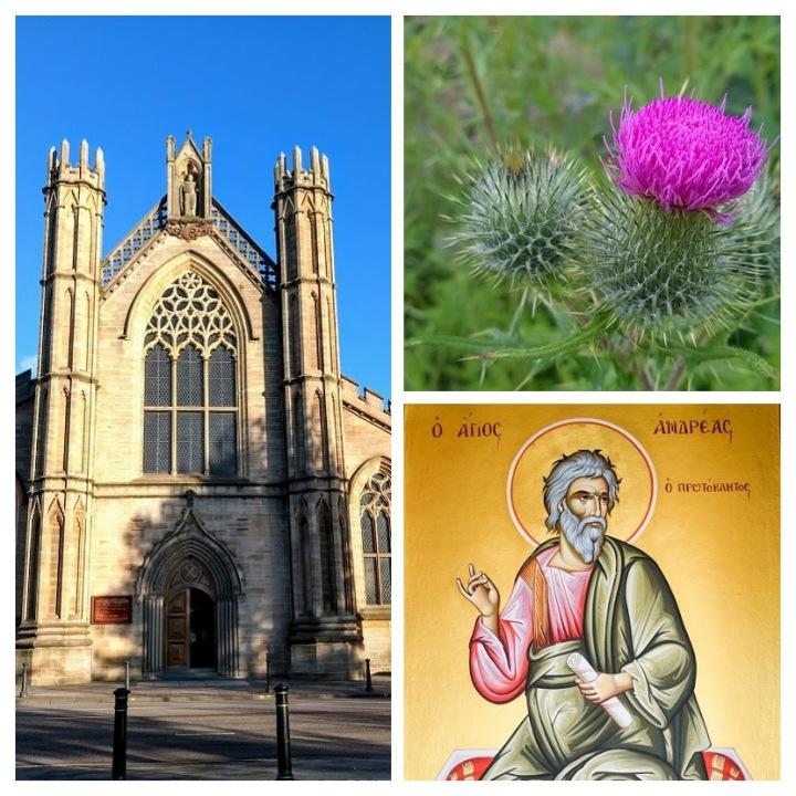 Catedral de Saint Andrew, em Glasgow ; Thistle, a flor símbolo da Escócia; Saint Andrew